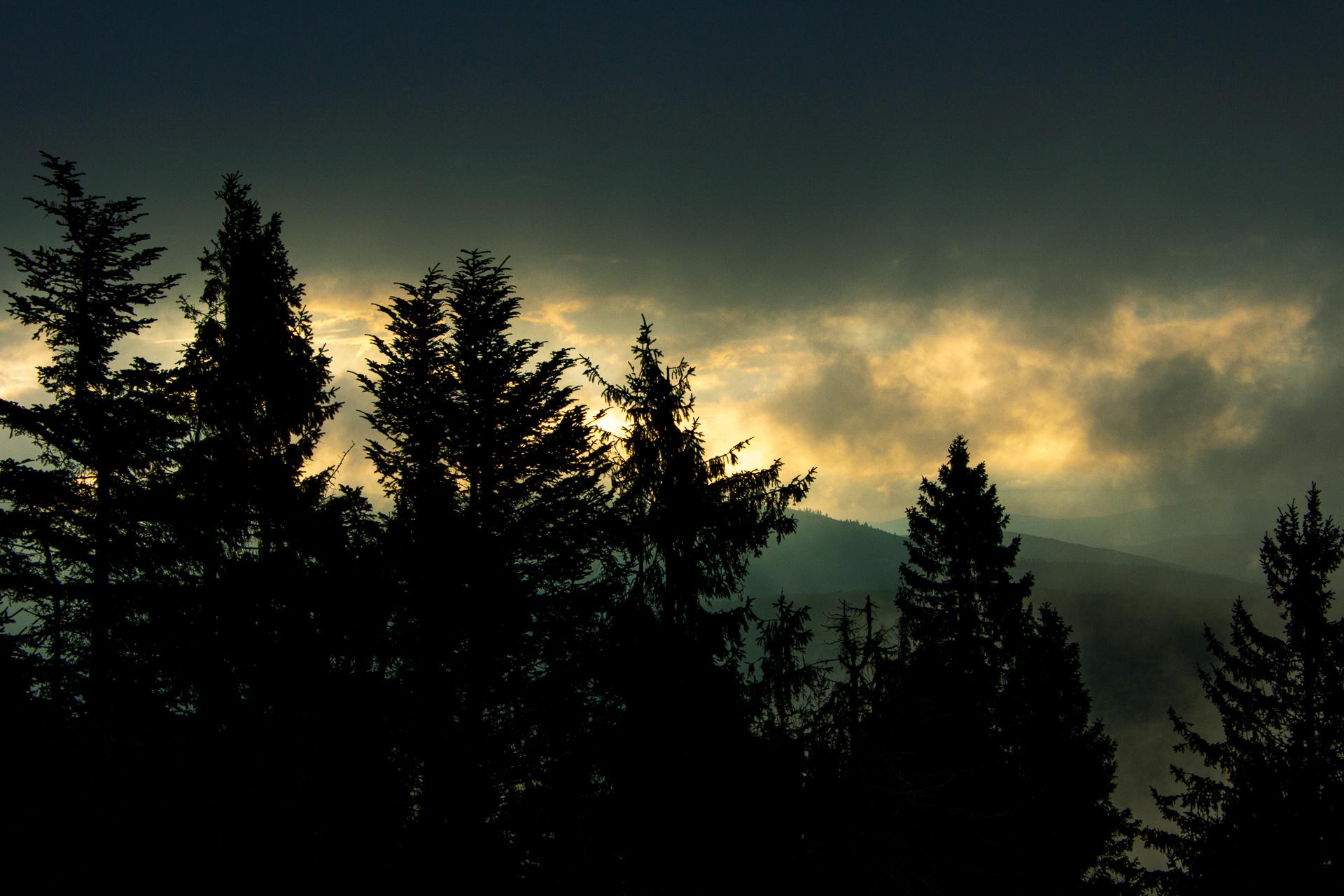 Výberkový les a noc v rozhľadni